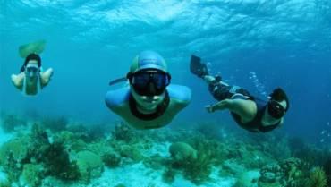 Curso de Mergulho livre (mergulho em apneia)