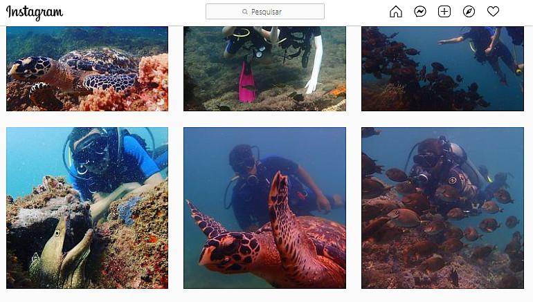 fotos de mergulho instagram